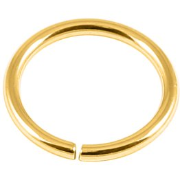 18ct Gold-Plated Continuous Ring
