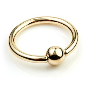 9ct Yellow Gold Hinged Segment Ring 14G 1.6mm x 10mm