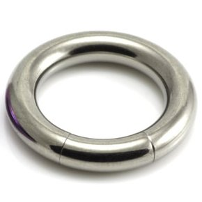 4mm Gauge Titanium Segment Ring