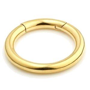 4mm Gauge Hinged 24ct Gold Pvd Segment Ring